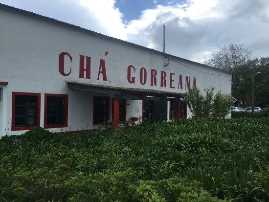 Plantações de Chá Gorreana (Gorreana Tea Plantation): photo0.jpg