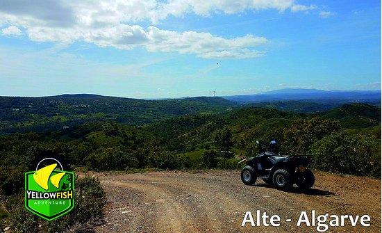Scenic Views - Alte Tour
