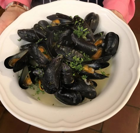 Tiverton, UK: Beautiful Exmouth Mussels
