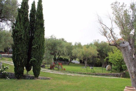Bosco, İtalya: Pie' d'Ulivo, parte dell'esterno visto dal Vecchio Frantoio