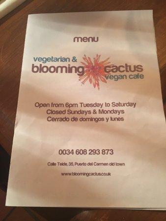Blooming Cactus Vegetarian Restaurant : photo1.jpg