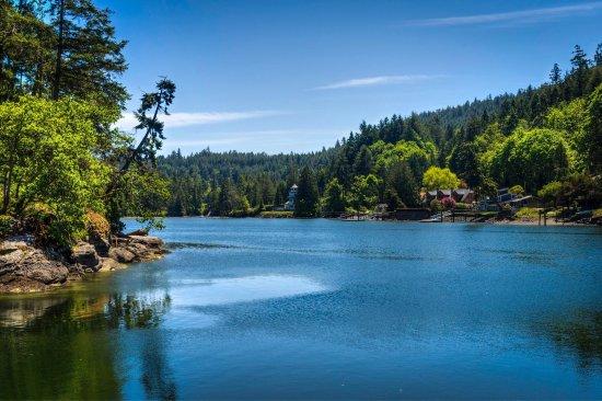 Duncan, Canada: photo1.jpg