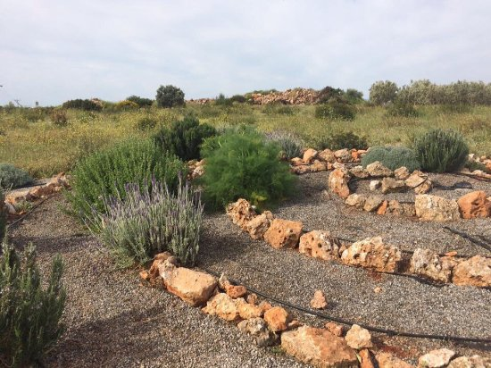 Eumelia Organic Agrotourism Farm & Guesthouse: Herb spiral
