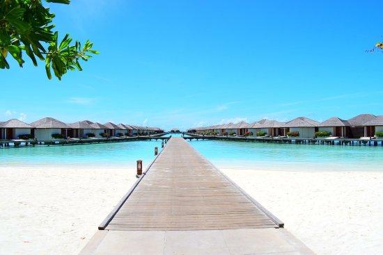Paradise Island Resort & Spa: photo1.jpg