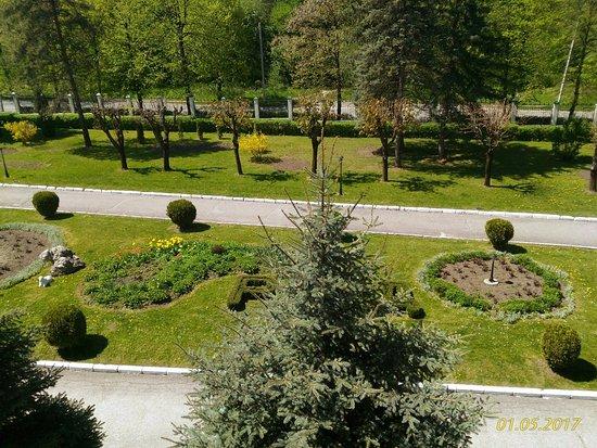 Dolina Narzanov Resort: Вид из номера полулюкс.