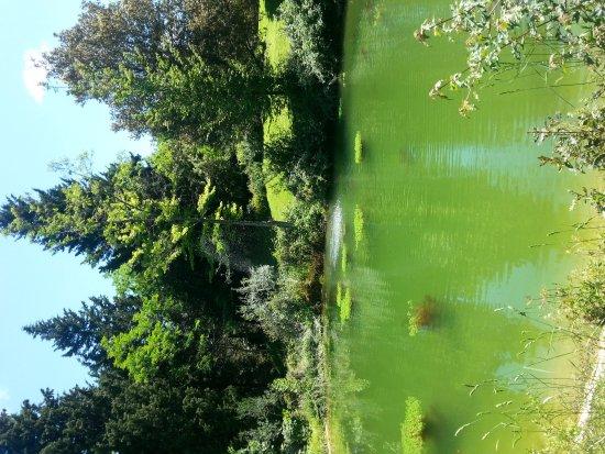Agriturismo Cercina Vecchia: 20170521_124111_large.jpg
