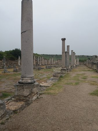 Perge Ancient City : Another avenue of columns