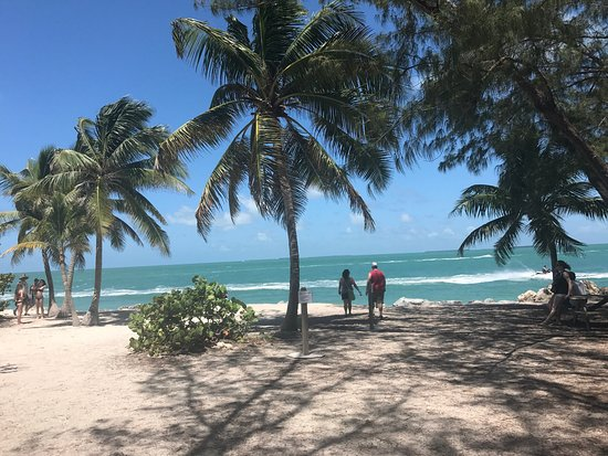 Fort Zachary Taylor Historic State Park: Love this beach. It's my favorite in Key West.  Plenty of shade if you need it. The views are am