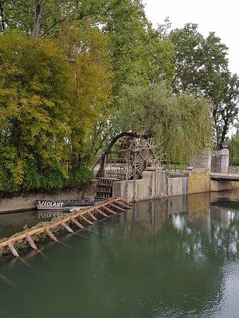 Zezere River Tomar