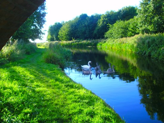 Retford, UK: Towpath Near Clayworth