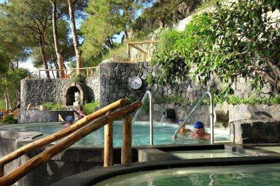 Bagno Giapponese Terme Ischia : Bazény menší foto di giardini poseidon terme forio tripadvisor