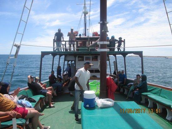 Agadir Beach: excursion en bateau