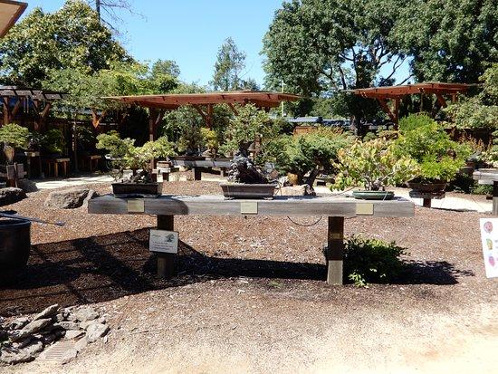 Oakland, CA: Original entrance point to the Bonsai Garden at Lake Merritt.