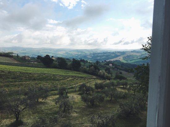 Servigliano, Italien: photo2.jpg