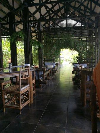 TikiVillas Rainforest Lodge: IMG_20170523_134716_large.jpg