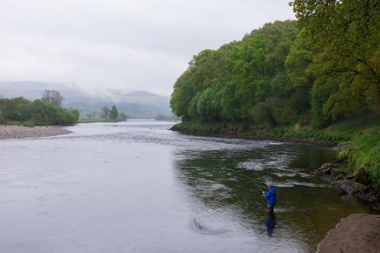 Larbert, UK: Spey fishing on the middle Tay