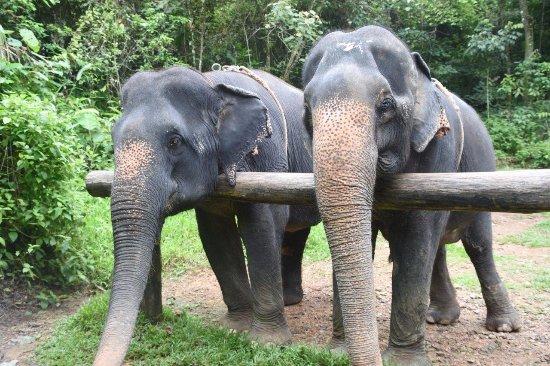 Phang Nga, Thailand: Choosri & Sownoi