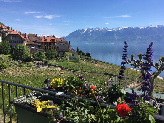 Lutry, Swiss: photo1.jpg
