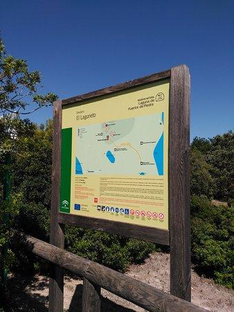 laguna de fuente piedra andalucia spain updated top tips before you go tripadvisor
