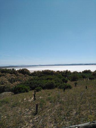 الأندلس, إسبانيا: Laguna de Fuente Piedra