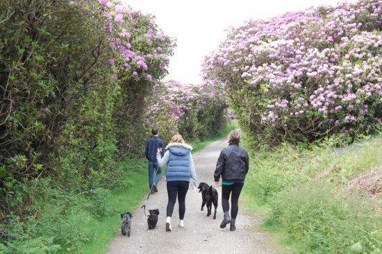 Port Talbot, UK: Family Stroll