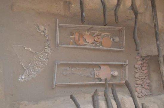 """Sipan, Peru: soldados com os pés amputados para não fugirem na """"outra vida"""". Foram sepultados junto com lhama"""