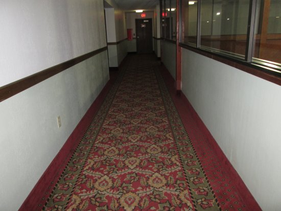 Barkers Island Inn: Lovely carpets in the wide hallways.