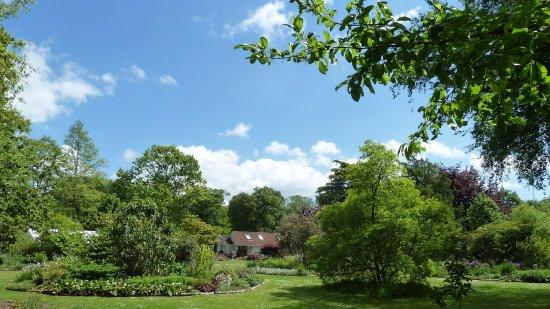 Ardleigh, UK: Green Island Garden, May 2017 - JPW photo 1