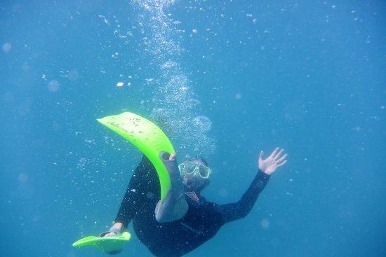 Cape Tribulation, Australia: Reef snorkeling