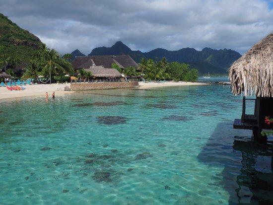 Hilton Moorea Lagoon Resort & Spa-billede