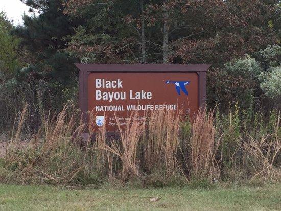 Monroe, LA: Placa do Black Bayou Lake