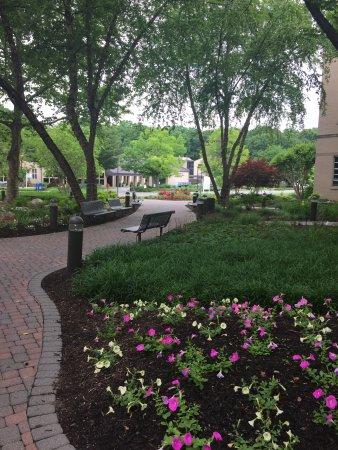 Zdjęcie Potomac
