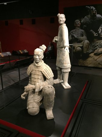 Terracotta Warriors Tour Seattle