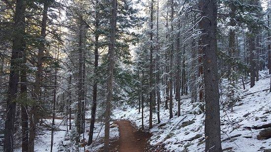 Pine, CO: Staunton State Park