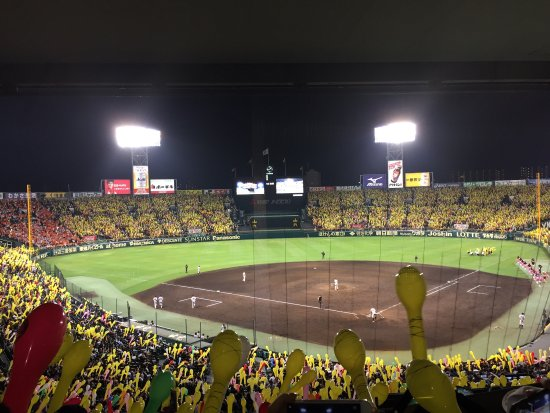 Hanshin Koshien Stadium: photo0.jpg