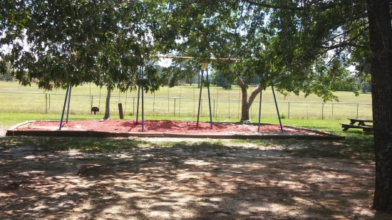Warner Robins, GA: Playground