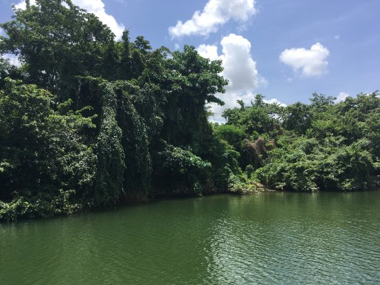 Rio Chavon: photo2.jpg
