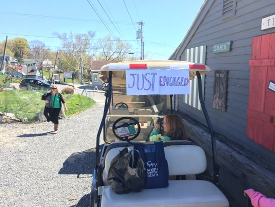 Peaks Island, ME: Just Engaged Golf Cart