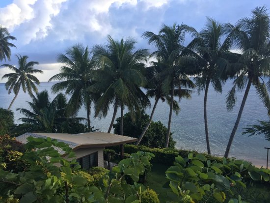 Coconut Grove Beachfront Cottages: This is the Banana bure and the beach just beyond the coconute trees and the hedge.