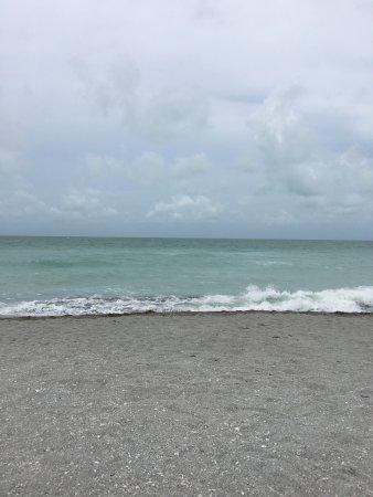 Venice, FL: photo1.jpg