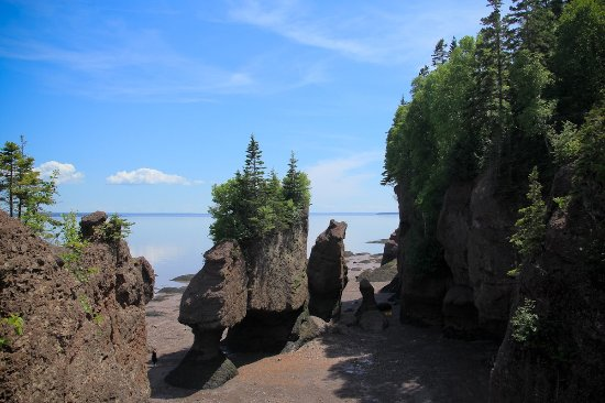 Hopewell Rocks: photo1.jpg