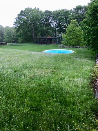 New Canaan, CT: martini glass shape pool Mr Johnson used