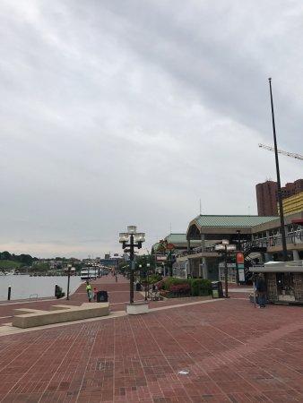 Inner Harbor: photo1.jpg