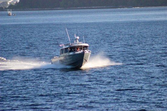 Lady Rose Marine Services: photo2.jpg