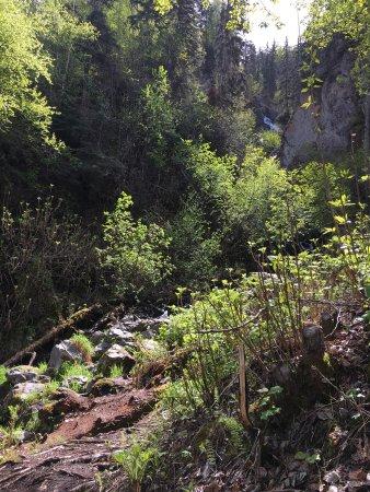 Palmer, AK: photo1.jpg
