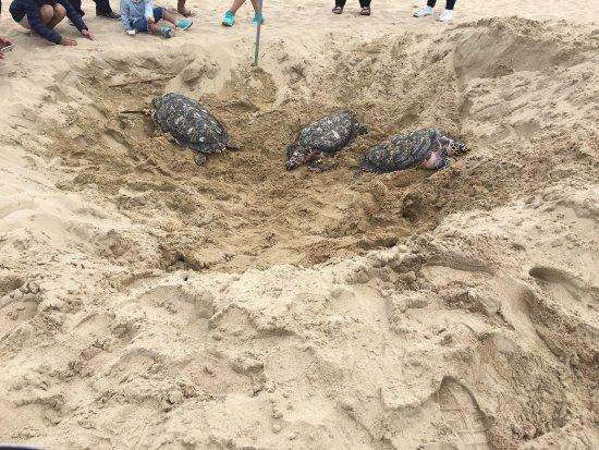 how to get to haeundae beach