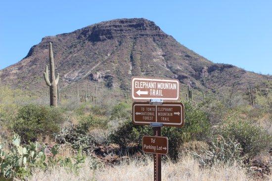 Cave Creek, AZ: Elephant Mountain Trail