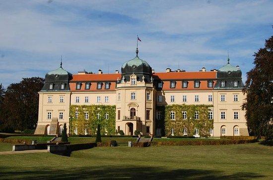 Tour privato: Castelli di Lany e di