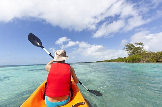 Snorkel and Kayak Adventure in Antigua