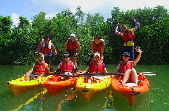 Pulau Ubin Mangrove Kayak Adventure from Singapore